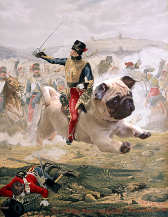 Unleash the dogs of war!